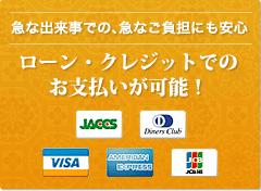 ローン・クレジットでのお支払いが可能!
